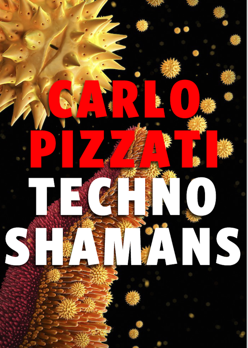 TECHNOSHAMANS NEW COVER