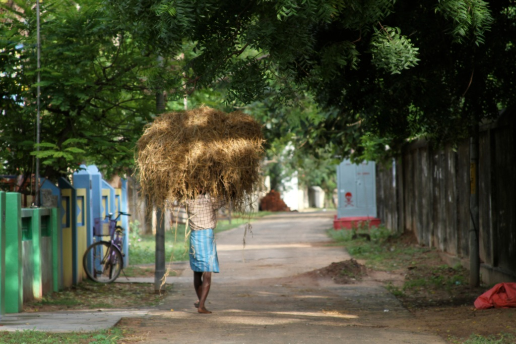 La casa madre dell'Assoluto: l'India si racconta. di Carlo Pizzati