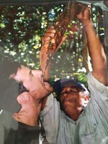 Acqua di legno